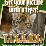 TIGERS Preservation Station