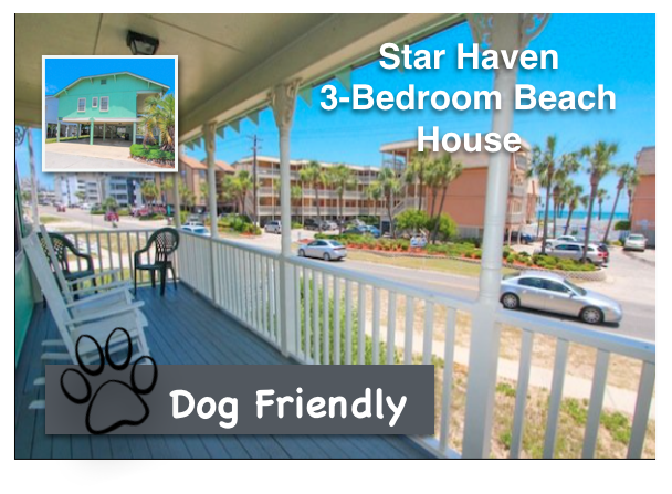 50% OFF Starhaven February Stays!!!