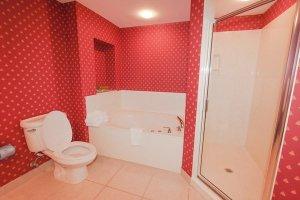 Large tub in master bathroom