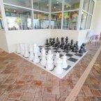 Indoor chess
