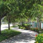 Walkway by street